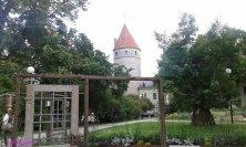 festival dei fiori a Tallinn