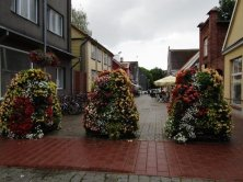 fiori lungo strada pedonale