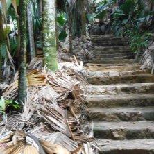 percorso all'interno della valle de Mai