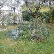 giardino a Calcata di Portoghesi
