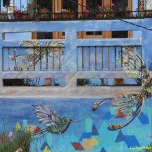 graffito con uccelli