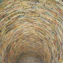 pozzo di libri