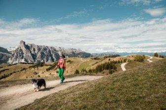 Trentino per cani