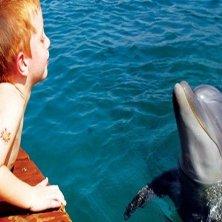 bambino con delfino