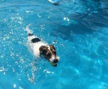 in piscina a VauLand