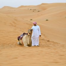 Ash Sharqiyah - Omani man with the camel in the desert, Sharqiyah Sands, Ash Sharqiyah, Oman