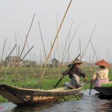 donne al lavoro orti galleggianti