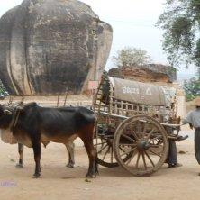 taxi a Mingun