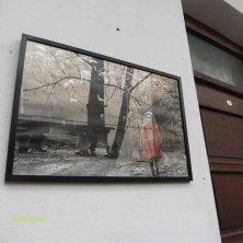 foto nel cortile