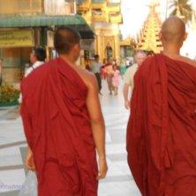 monaci alla Shwedagon
