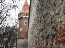 mura e torretta rimaste