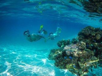 snorkeling per due