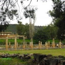 tempio nella vegetazione