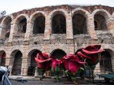 Arena in Love