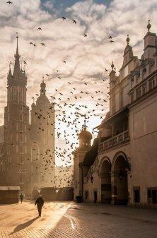Cracovia centro