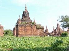 templi Bagan