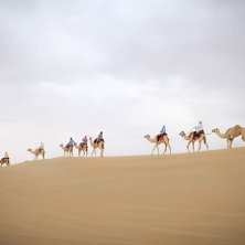 Al Marmoom Bedouin Experiences (5)