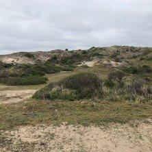 dune e parco