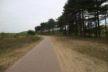 pista ciclabile nel parco