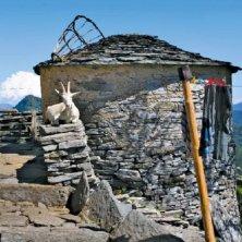 Fattorie sui sentieri Monte Generoso