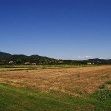Colli Euganei_paesaggio rurale