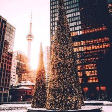 Toronto d'inverno Natale CN + albero @viajaacanada arjsun