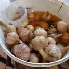 aglio in salamoia al mercato