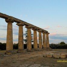 Metaponto_le colonne dette Tavole Palatine Basilicata_phVGaluppo