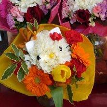 composizione floreale con gatti in Giappone
