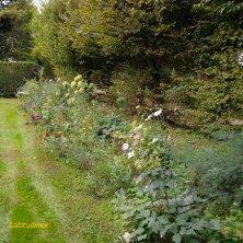 giardino_phVGaluppo