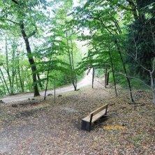 bosco a Castel Thun