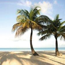 riapertura a Antigua e Barbuda
