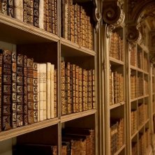 scaffali biblioteca Mafra