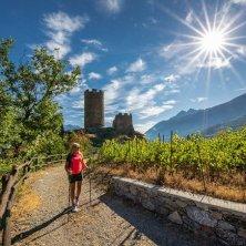 VALLE D_AOSTA-Castello di Châtel Argent - Villeneuve (foto Enrico Romanzi)-6946