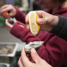 Bay Coast_Galway Market_Oysters