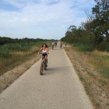 in bicicletta Camargue