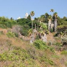 cupola e vegetazione