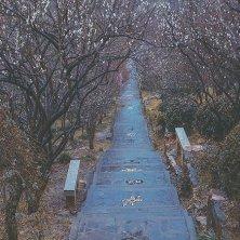inverno a Suzhou