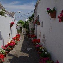 vicolo fiorito ad Alberobello