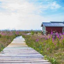 l'arcipelago di Haparanda_foto Linnea Isaksson Lapponia svedese