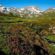 Simplon montagne Vallese d'estate