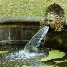 dettaglio fontana nel giardino