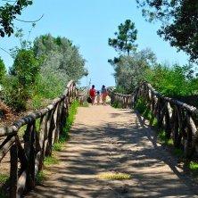 Caorle slow Vallevecchia_dune verso la spiaggia_phVGaluppo