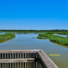 ValleVecchia_panorama da una torretta per il birdwatching_phVGaluppo