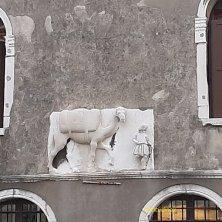 cammello di Palazzo Mastelli