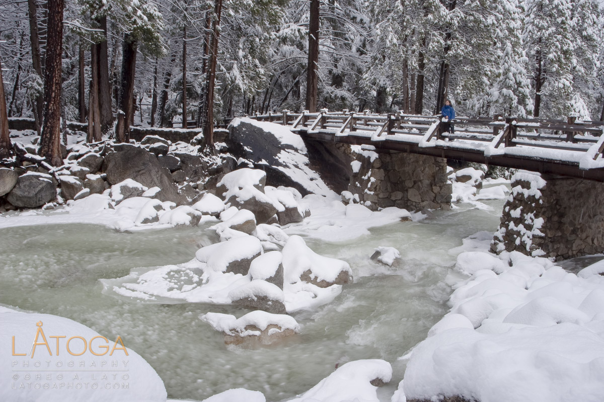 Women watches Yosemite River flow under snow covered bridge she is standing on near the base of Yosemite Falls in Yosemite National Park after a winter storm.