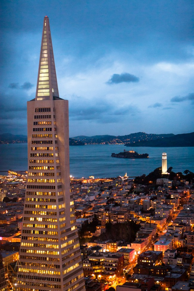 Aerial View of Coit Tower and San Francisco, California