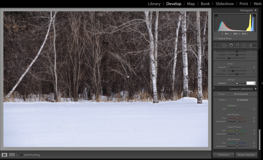 Screenshot of Lightroom with Dehaze set to Zero.