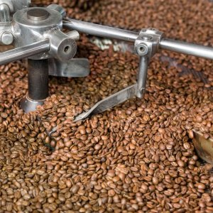 BRÉSIL SANTOS YELLOW BOURBON - Café grains et moulus- La Torréfaction d'Arcachon