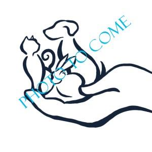 logo photo - Dr Caryne Ramage (Locum)
